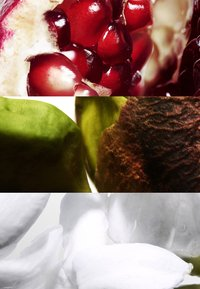 DAVIDOFF Fragrances - RUN WILD FOR HER EAU DE PARFUM - Eau de Parfum - - - 2