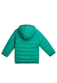 Esprit - Winter jacket - green - 1
