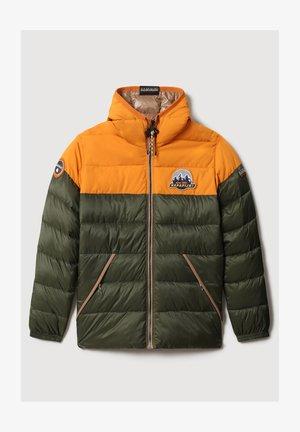 ALAY - Winter jacket - green