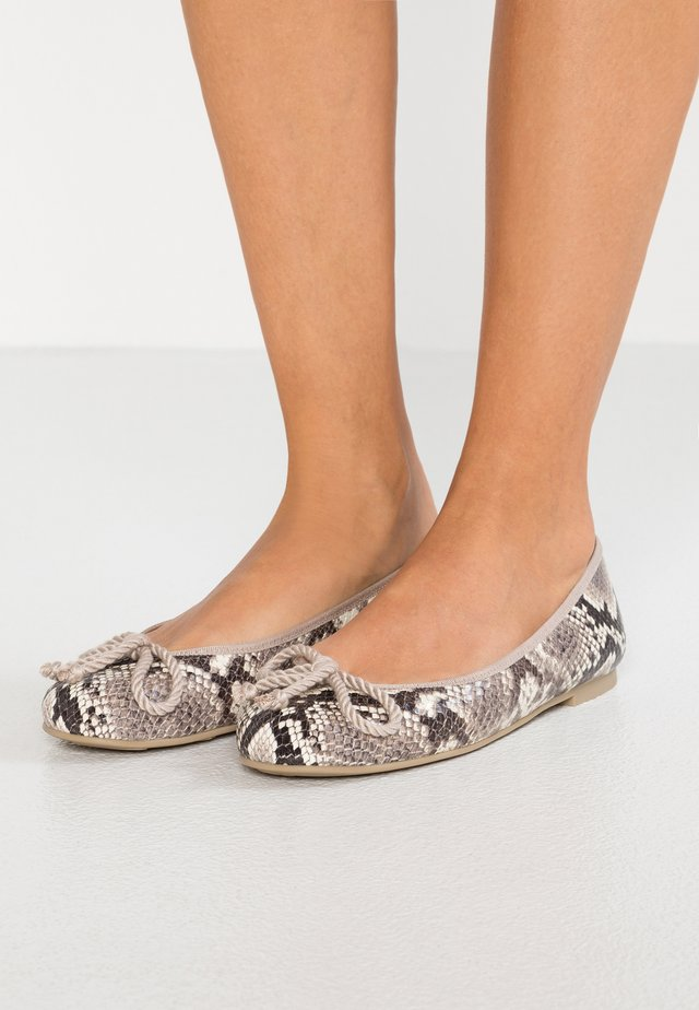 DANI - Ballet pumps - roccia/micenas/safari/keros