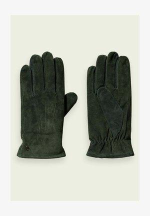 TEDDY - Gloves - green