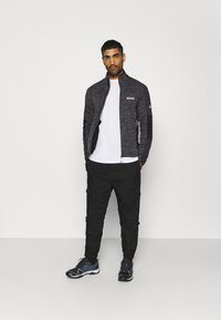 Regatta - COLADANE - Fleece jacket - ash - 1