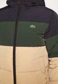Lacoste - Down jacket - viennese/viennese-sinople-abysm - 5