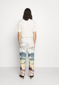 Jaded London - LANDSCAPE SKATE - Jeans relaxed fit - multi - 2
