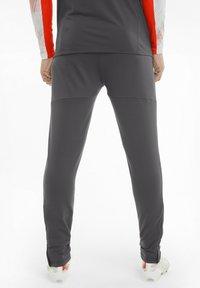 Puma - TEAMLIGA TRAINING PANTS PRO - Pantaloni sportivi - asphalt-red blast - 2