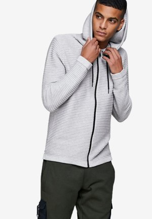 Zip-up hoodie - light grey