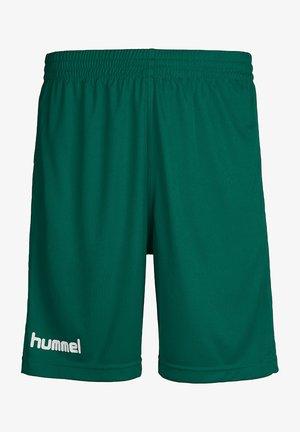 Sports shorts - evergreen pr