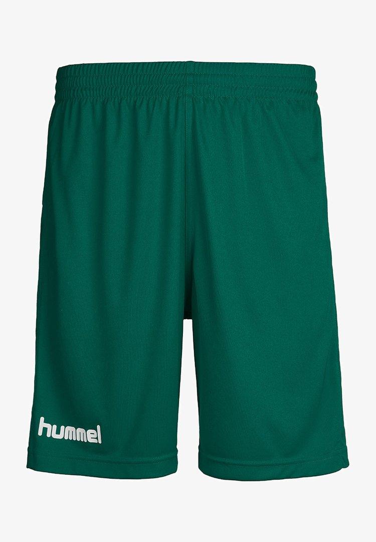 Hummel - Sports shorts - evergreen pr