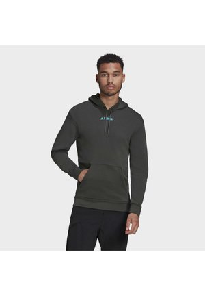 TERREX FOUNDATION OUTDOOR HOODED SWEAT - Hoodie - green