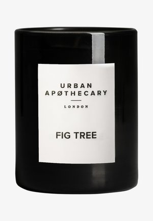 LUXURY BOXED GLASS CANDLE - FIG TREE - Scented candle - -