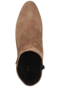 Scapa - Ankle boots - taupe - 1