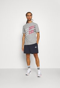 Tommy Hilfiger - GRAPHIC TEE - T-shirt med print - grey - 1