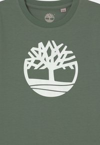 Timberland - SHORT SLEEVES - Print T-shirt - green - 2