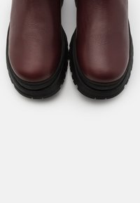 Selected Femme - SLFLUCY - Platform ankle boots - winetasting - 5