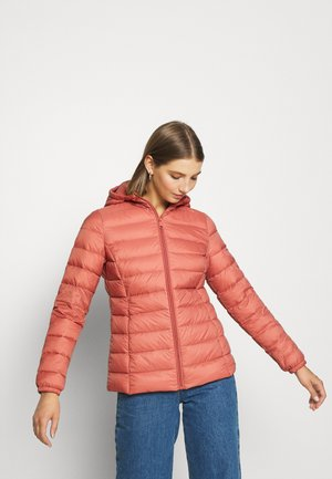 BYIBICO JACKET - Dunjakke - canyon rose