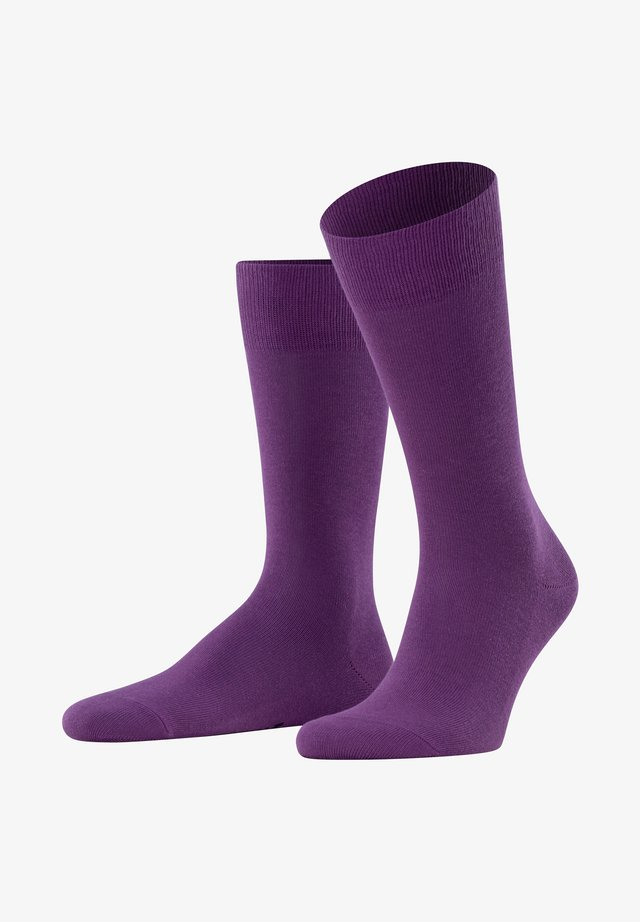 FAMILY - Socks - ultraviolet