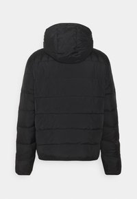 Calvin Klein Jeans - PADDED JACKET - Light jacket - black - 1