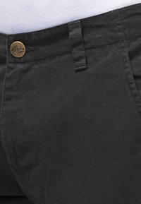 Dickies - EDWARDSPORT - Cargobukser - black - 3