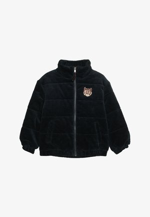 EVANDER JACKET - Winter jacket - dark blue