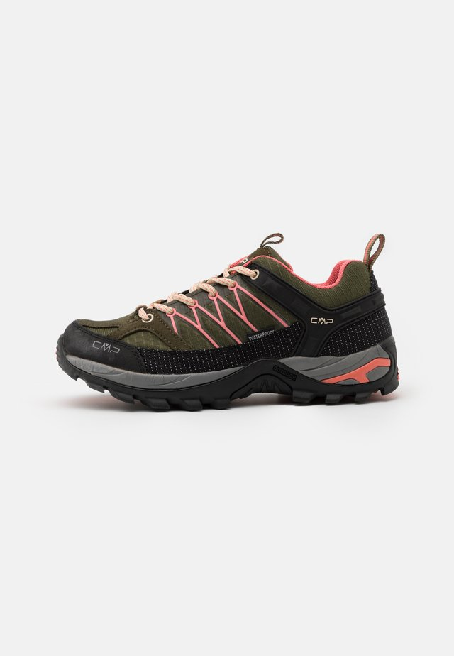 RIGEL LOW TREKKING SHOE WP - Obuwie hikingowe - kaki/flamingo