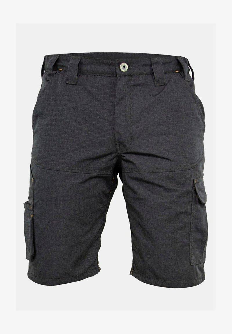 FORSBERG - Shorts - anthra