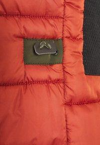 camel active - Zimní kabát - oliv - 3