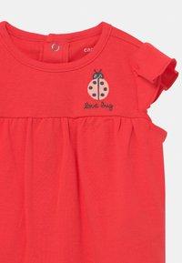 Carter's - LADYBUG SET - Print T-shirt - pink - 2