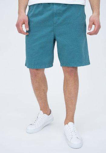 CARSON  - Shorts - hydro