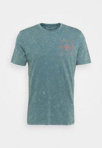lichen blue