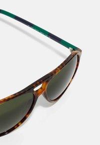 Polo Ralph Lauren - Sunglasses - shiny jerry havana - 3