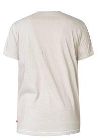 BadRhino - CALIFORNIA - Print T-shirt - grey - 1