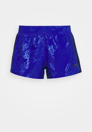 PACER CAMO - Sportovní kraťasy - bold blue