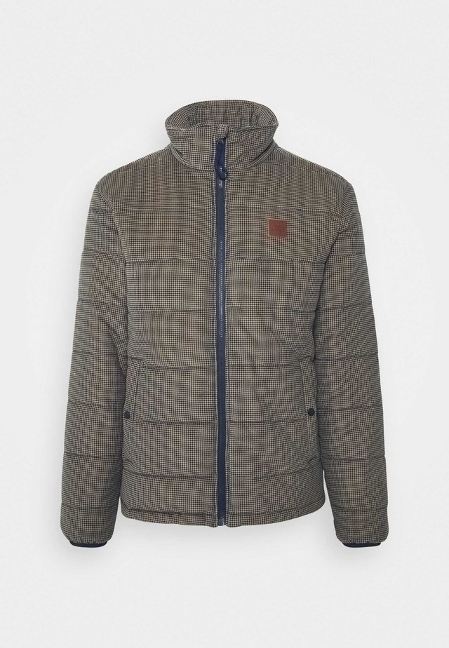 CASS PUFFER - Winter jacket - navy/khaki