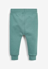 Next - Tracksuit bottoms - teal - 1