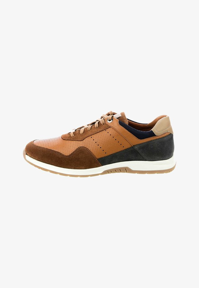 PEGLIO - Sneakers laag - brown