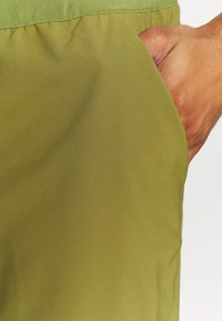 Patagonia - TERREBONNE SHORTS - Shorts - palo green - 6
