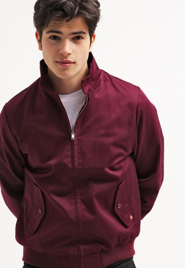 HARRINGTON - Chaquetas bomber - wine