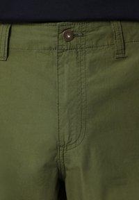 Napapijri - NOTO - Shorts - green cypress - 5