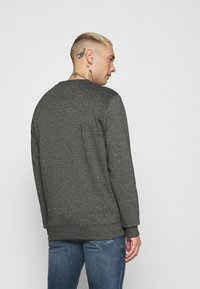 Tommy Jeans - MOUNTAIN GRAPHIC CREW - Sweatshirt - black heather - 2