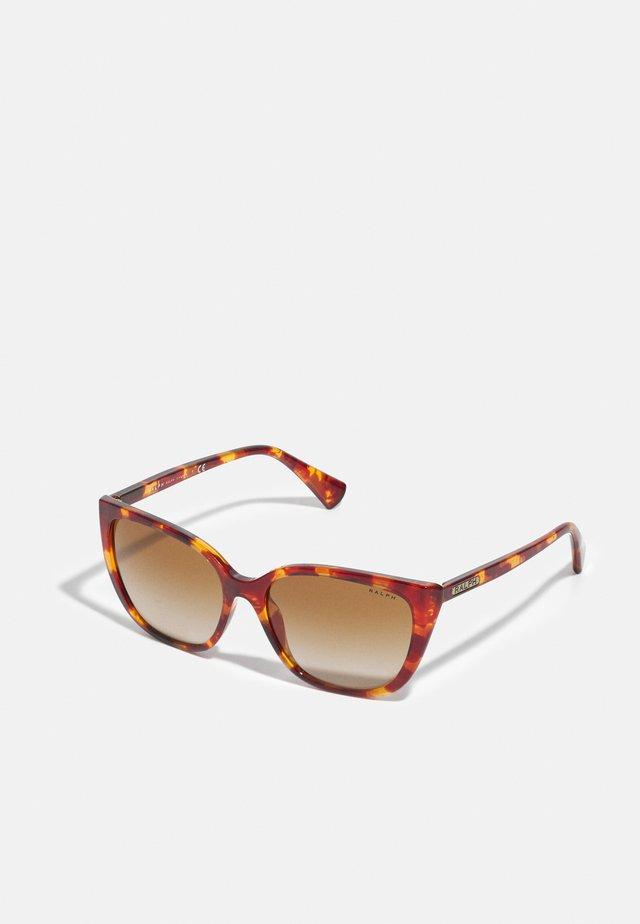 Sunglasses - shiny sponged havana honey