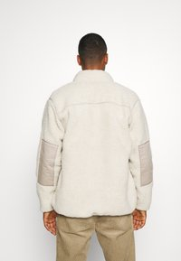 Dickies - CHUTE - Veste polaire - light taupe - 2