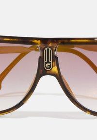 Carrera - UNISEX - Sunglasses - mottled brown - 4