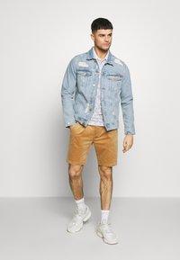 Anerkjendt - AKCARLO - Shorts - tannin - 1