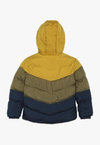 Friboo - Winter jacket - golden palm/military/olive - 1
