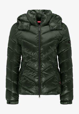CASSEDY - Winter jacket - dark green