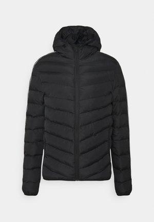 HARRISON - Winter jacket - black