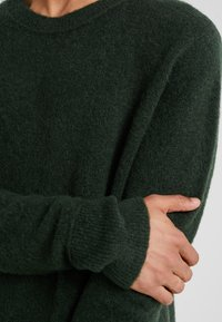 Bruuns Bazaar - CHRIS CREW NECK - Jumper - sage green - 5