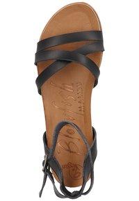 Blowfish Malibu - Sandals - black dyecut - 3