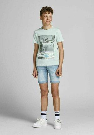 Print T-shirt - pale blue