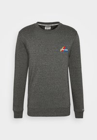 Tommy Jeans - MOUNTAIN GRAPHIC CREW - Sweatshirt - black heather - 4